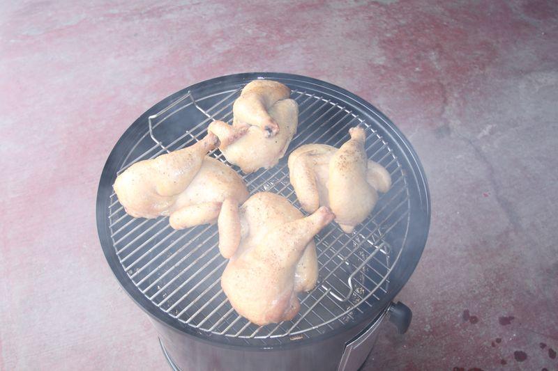First_Smoke_Chicken12